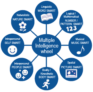 we use the theory of multiple intelligences as a curriculum framework